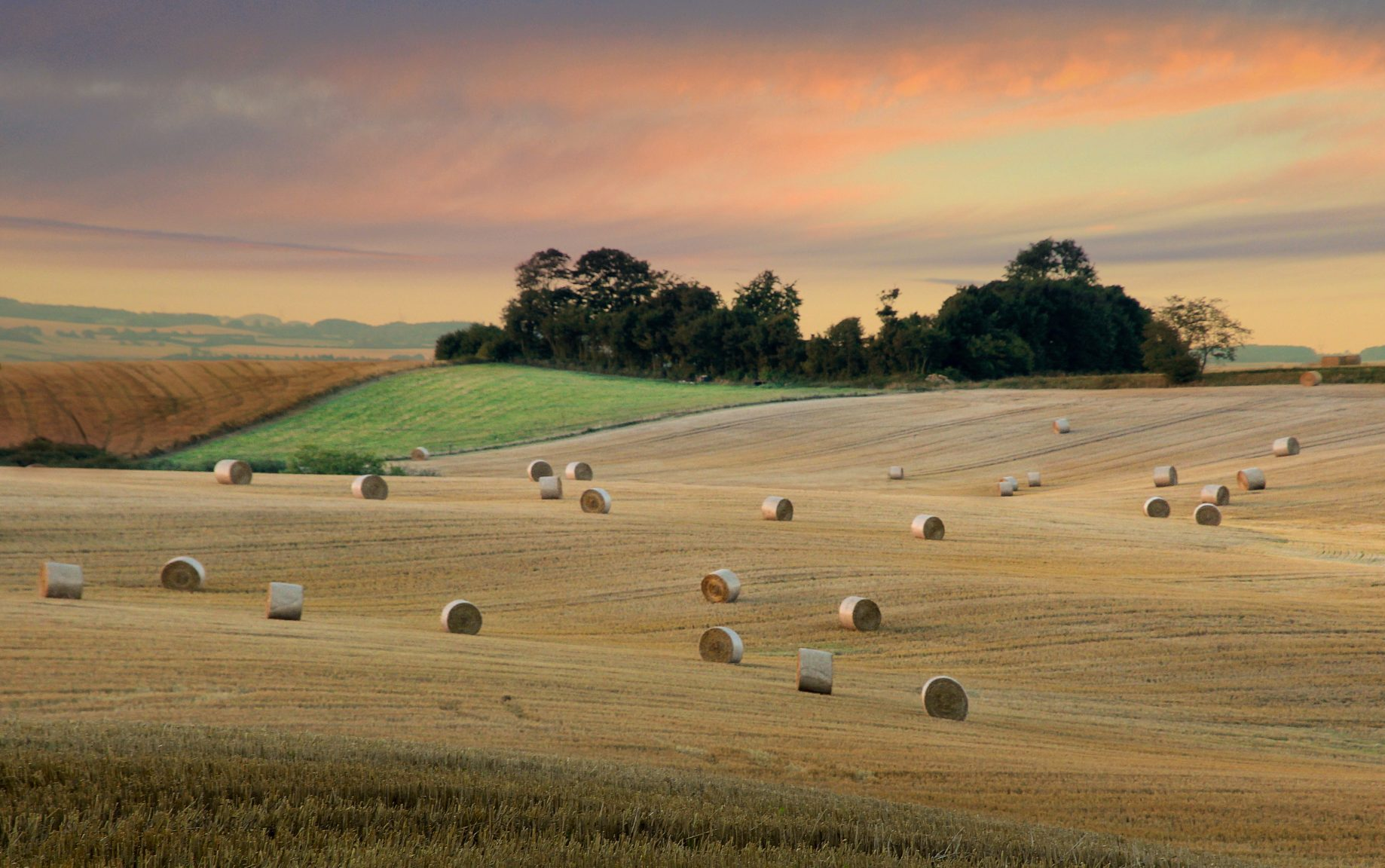 Tuscan plains