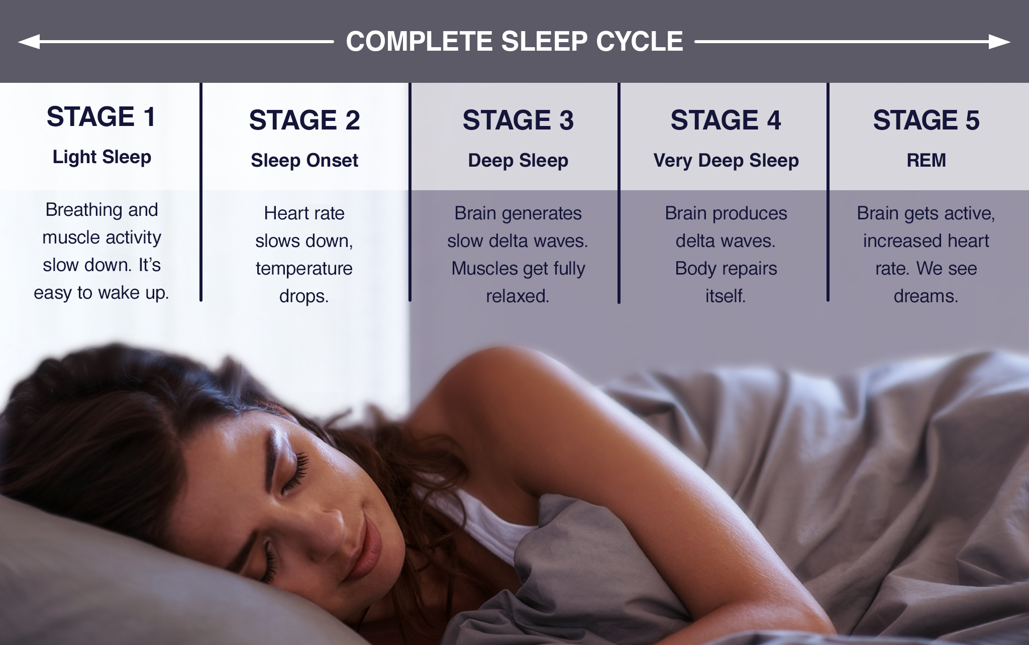cycle of sleep