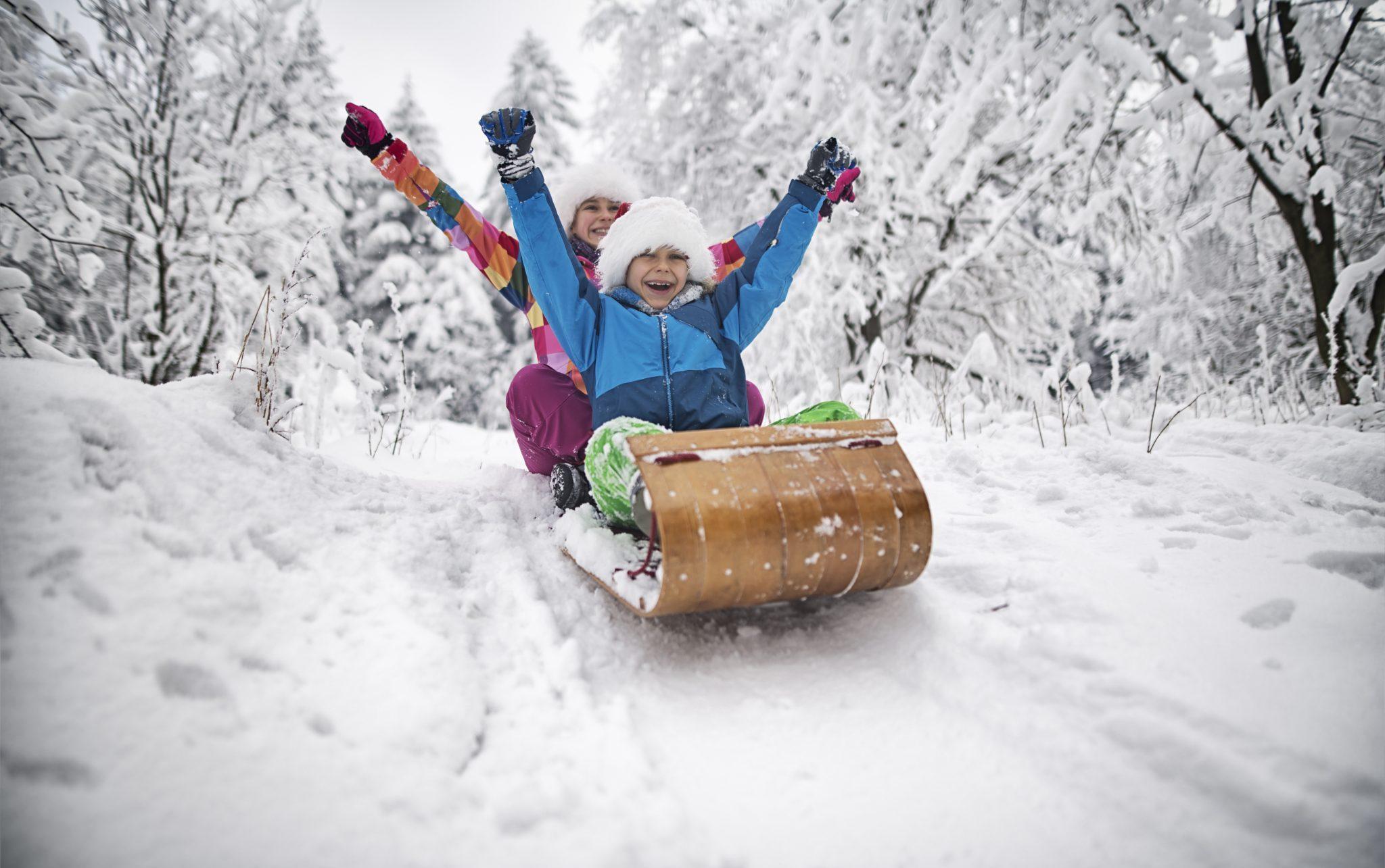 sleigh Christmas
