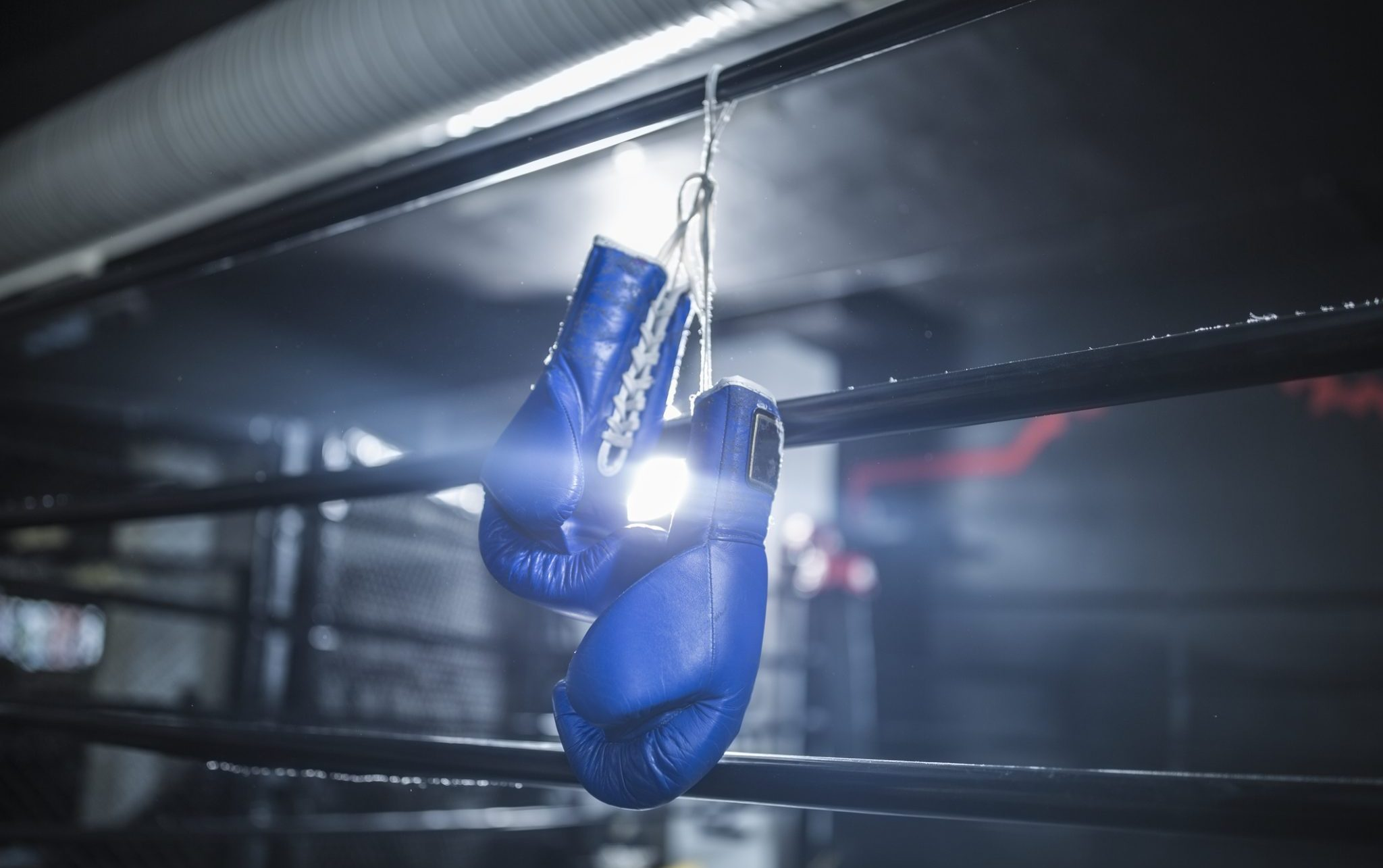 endurance athletes pandemic boxing gloves